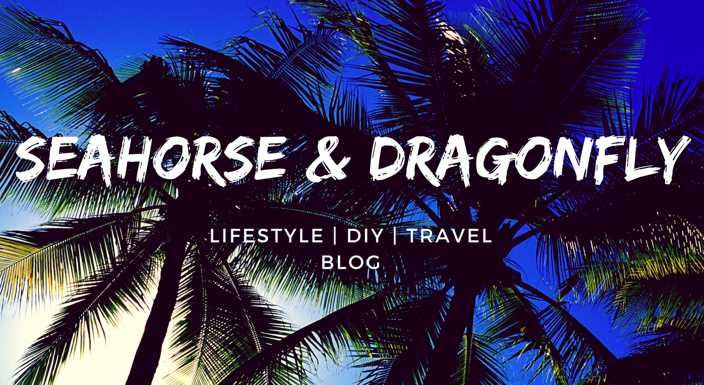 Seahorse & Dragonfly. Lifestyle | DIY | Travel